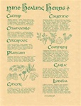 Herbs Parchement poster